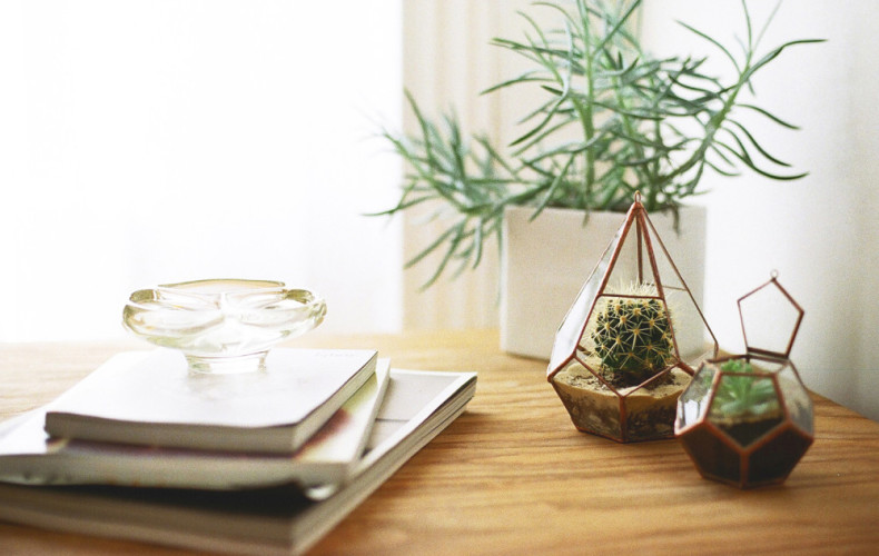 Apartment 101: 7 low maintenance indoor gardening ideas you will love