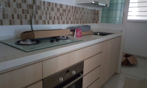 Housing and Development  Projects (kitchen)